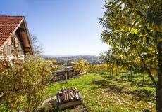 Schön garten mit Weinbergen und Terrasse auf Rebweg im Schweinestall Lizenzfreie Stockbilder