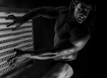 Schön gemeißelt Bodybuilder Lizenzfreie Stockfotografie