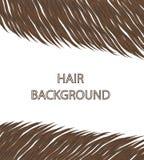 Schön Haar der Traum jeder Frau Lizenzfreie Stockfotos