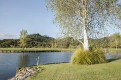 Schön landschaftlich verschönerter Boden. Stockbilder