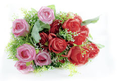 schön, Schönheit, Schönheit in der Natur, Blumenstrauß, hell Lizenzfreies Stockbild