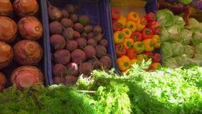 Schön Schaukasten im Gemüsemarkt stock video footage