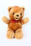 Schön Teddybär-tragen Sie Lizenzfreies Stockbild