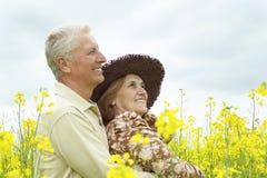 Schöne ältere Paare gingen spazieren stockbild