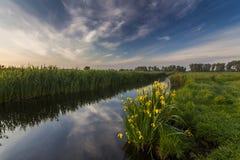 Schöne Abendlandschaft mit dem Fluss Lizenzfreie Stockbilder