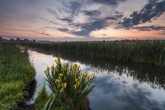 Schöne Abendlandschaft mit dem Fluss Lizenzfreies Stockbild