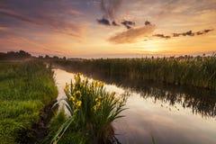 Schöne Abendlandschaft mit dem Fluss Stockbild