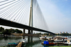 Schöne Ada-Brücke in Belgrad, Serbien Stockfotografie