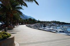 Schöne adriatisches Seebucht mit Kiefern in Kroatien Lizenzfreie Stockfotografie