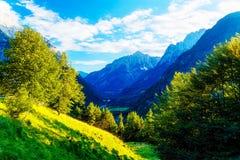 Schöne Alpen-Landschaft Schöne majestätische Bergspitzen Stockfotos