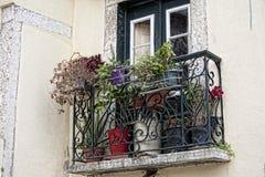 Schöne alte Fenster Stockbild