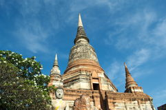 Schöne alte Kunst in Buddha bei Wat Yai Chaimongkol, Ayutthaya, Lizenzfreie Stockfotografie