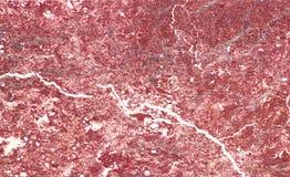 schöne alte rote Marmorplatte im Palast Stockfotografie