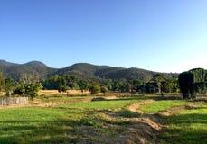 Schöne Ansicht über den Bauernhof Stockfotografie