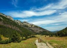 Schöne Ansicht über Nationalpark Tatra mit Bergen am sonnigen Frühlingstag mit blauer Himmel nahe gelegenem Zakopane-Dorf, Polen lizenzfreies stockbild