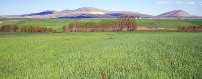 Schöne Ansicht der Berge von der Türkei Lizenzfreie Stockfotografie