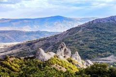 Schöne Ansicht der Berglandschaft mit Wald lizenzfreies stockbild
