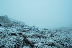 Schöne Ansicht der nebelhaften Spitze der Karpatenberge im Winter Lizenzfreie Stockfotos
