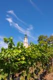 Schöne Ansicht der Pilgerfahrtkirche in Birnau bei Bodensee lizenzfreies stockbild