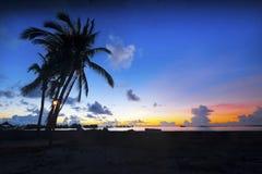 Schöne Ansicht der SchattenbildPalme während des Sonnenaufgangs Lizenzfreie Stockfotos