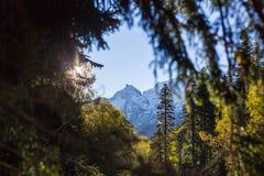 Schöne Ansicht an der weißen Bergspitze durch grünes Baumfenster Stockbild