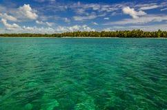 Schöne Ansicht des azurblauen Wassers und exotisch, Palmen lizenzfreie stockfotos