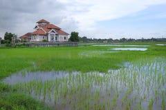 Schöne Ansicht des Bungalowhauses am Reisreisfeld in Malaysia Element der Auslegung Lizenzfreie Stockfotos