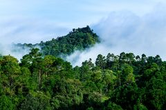 Schöne Ansicht des Gebirgsnebels nebelig und des Himmels stockfotos