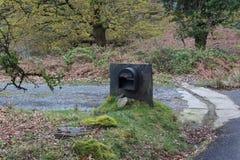 Schöne Ansicht des Gegenstandes im Park von Snowdonia lizenzfreies stockfoto