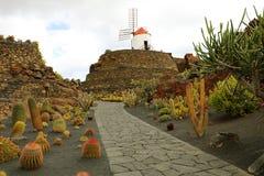 Schöne Ansicht des Kaktusgartens mit Windmühle Jardin de Cactus in Guatiza, Lanzarote, Kanarische Inseln Stockbild