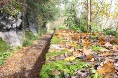 Schöne Ansicht des langen Weges der Herbstsaison Lizenzfreie Stockbilder
