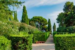 Schöne Ansicht des Parks mit dem hellen Grün Stockbild