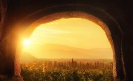 Schöne Ansicht des Weinberg Alazani-Tales in der Provinz von stockfotos