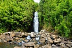 Schöne Ansicht eines Wasserfalls gelegen an berühmter Straße auf Hana auf Maui-Insel, Hawaii lizenzfreie stockfotos