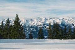 Schöne Ansicht von Alpen Stockbild