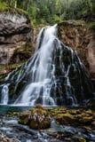 Schöne Ansicht von berühmtem Gollinger Wasserfall mit moosigen Felsen und grünen Bäumen, Golling, Salzburger-Land, Österreich stockfoto