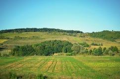 Schöne Ansicht von Feldern und von Bergen im Hintergrund des blauen Himmels Stockfotografie