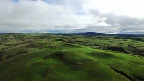 Schöne Ansicht von grünen Hügeln und von Feld vom Hubschrauber stock footage