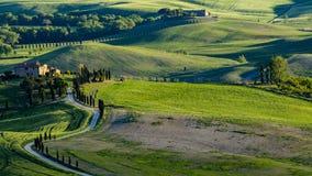 Schöne Ansicht von Grünfeldern und -wiesen bei Sonnenuntergang in Toskana stockbild