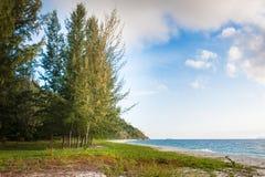 Schöne Ansicht von Koh Lipe Island und von Himmel vom Kieferwald Lizenzfreie Stockfotografie