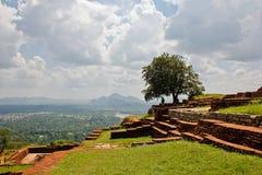 Schöne Ansicht von Sigiriya mit großem Baum stockfotos