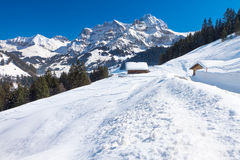 Schöne Ansicht zu Winter Schweizer Alpen, Berner Oberland, Adelboden Stockbild