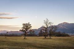 Schöne Ansicht zum Murnauer Moos im Bayern Stockbild