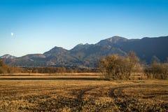 Schöne Ansicht zum Murnauer Moos im Bayern stockfotografie