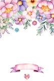 Schöne Aquarellkarte mit Platz für Text mit Pfingstrose, Blumen, Laub, saftiger Anlage, Niederlassung und Band vektor abbildung