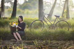 Schöne Asiatin im lokalen Trachtenkleid mit altem Fahrrad- und Blumenkorb auf dem grünen Sommerfeld stockbilder