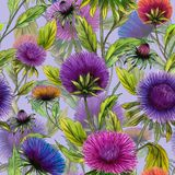 Schöne Aster blüht in den verschiedenen hellen Farben mit grünen Blättern auf hellem lila Hintergrund Nahtloses Blumenmuster lizenzfreie abbildung