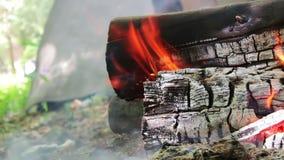 Schöne Aussicht des brennenden Feuers mit Funken und rote Flammen schließen herauf Ansicht Brennendes Holz im Kamin stock video