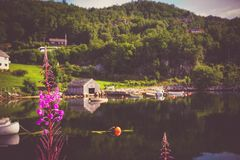 Schöne Aussicht des skandinavischen Dorfs nahe dem Wasser stockbilder