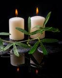 Schöne Badekurorteinstellung der grünen Rankenpassionsblume, Kerzen Stockfotografie